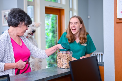 Every pet can have a treat at our vet clinic between Poulsbo & Bainbridge