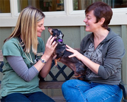 Dr. Lisa exams a dachsund with client.